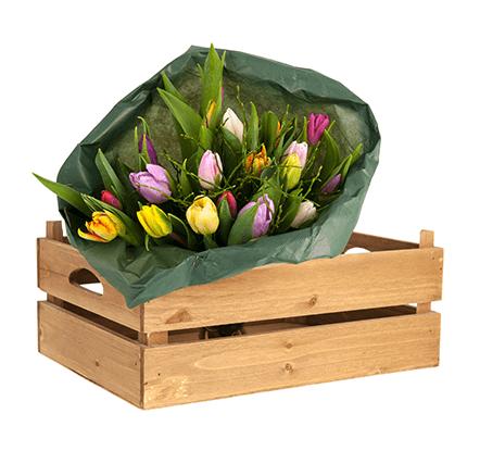actualites-notre-pepinier-pepinieredelillois-lillois