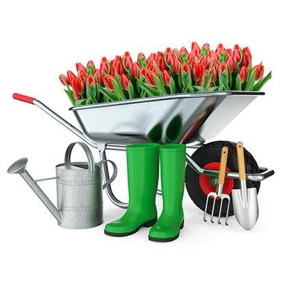 jardins-professionnels-pepinier-pepinieredelillois-lillois