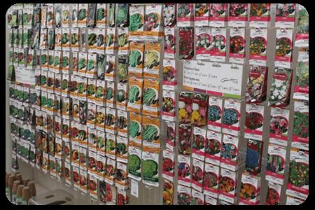 semences-nos-produits-pepinier-pepinieredelillois-lillois